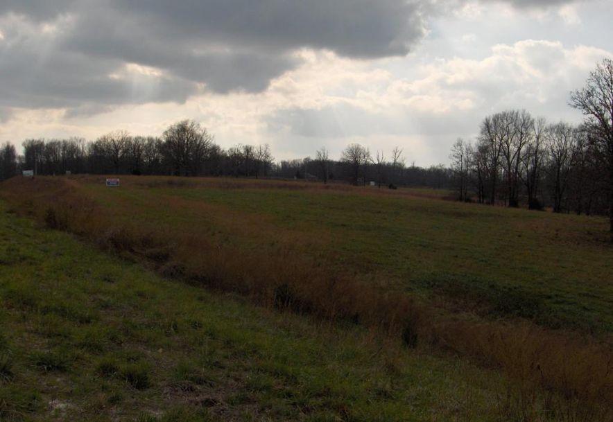 60 Craig Street Reeds Spring, MO 65737 - Photo 6