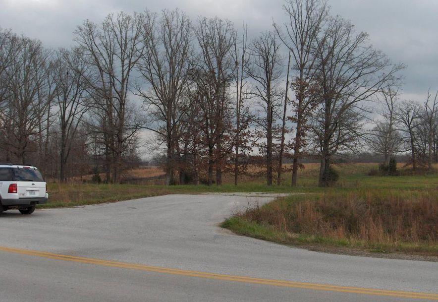 60 Craig Street Reeds Spring, MO 65737 - Photo 7