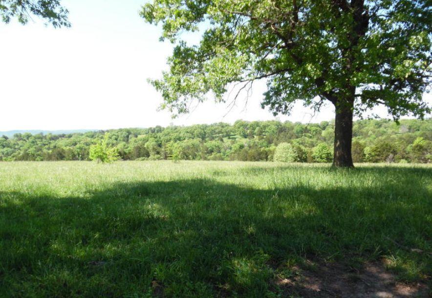 26318 Farm Road 1197 130 Land Eagle Rock, MO 65641 - Photo 1