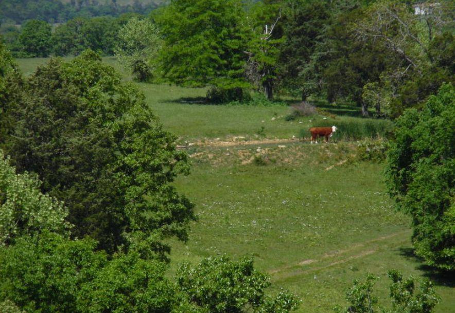 26318 Farm Road 1197 110 Farm Eagle Rock, MO 65641 - Photo 5