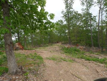 338 Acres Highway 248 Aurora, MO 65605 - Image 1