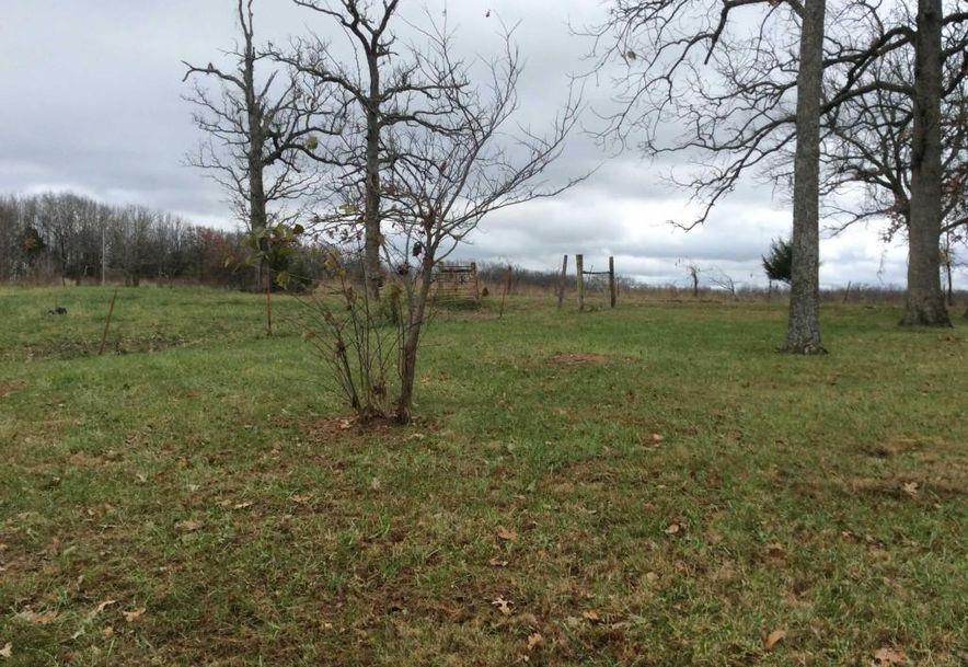 14865 Co Rd 217 Wheatland, MO 65779 - Photo 11
