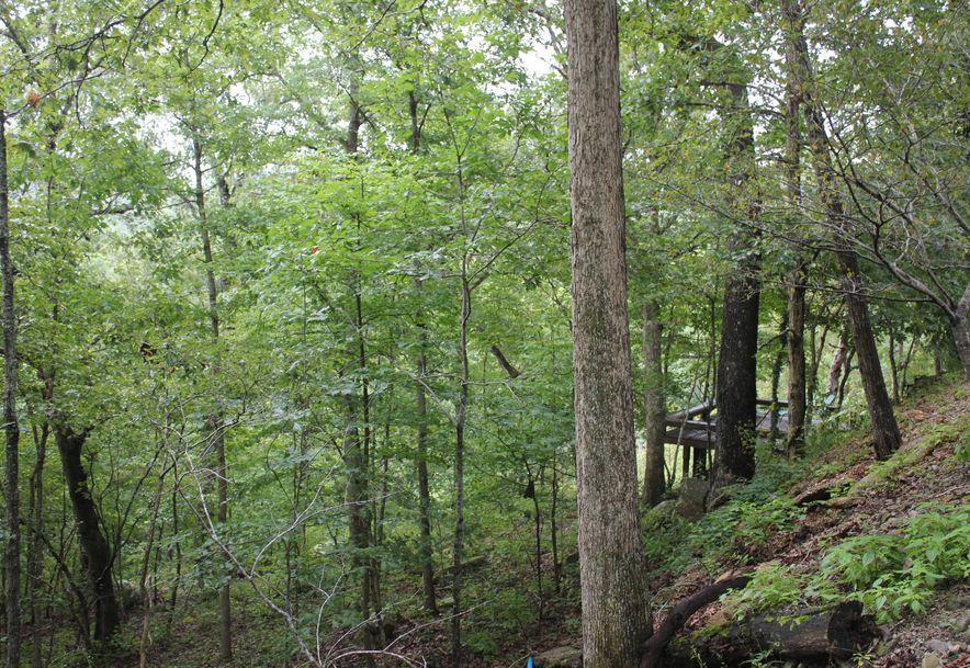 8177 County Road O-527 Ava, MO 65608 - Photo 7