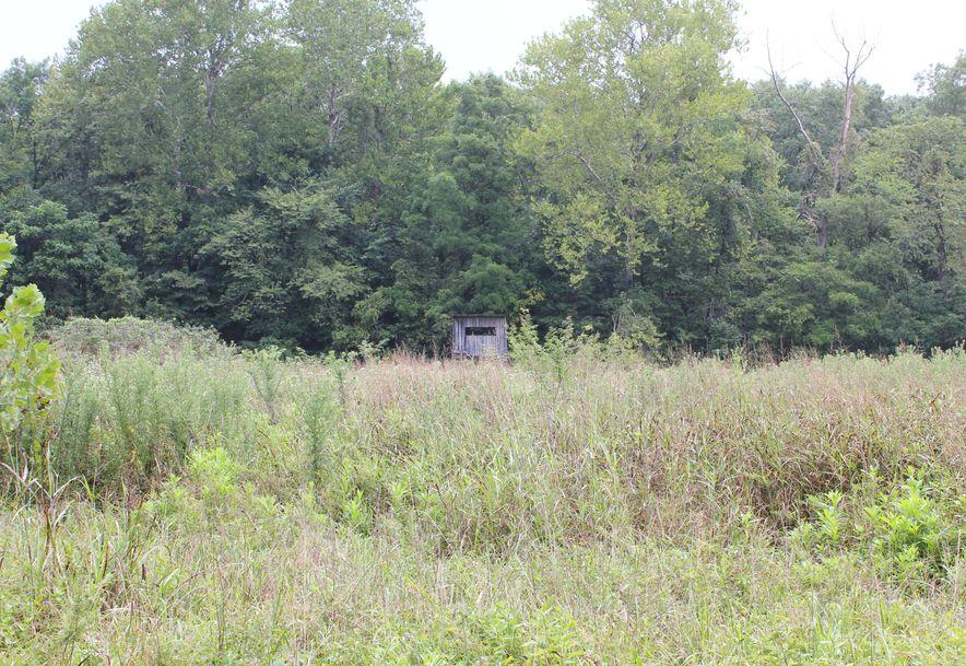 8177 County Road O-527 Ava, MO 65608 - Photo 66