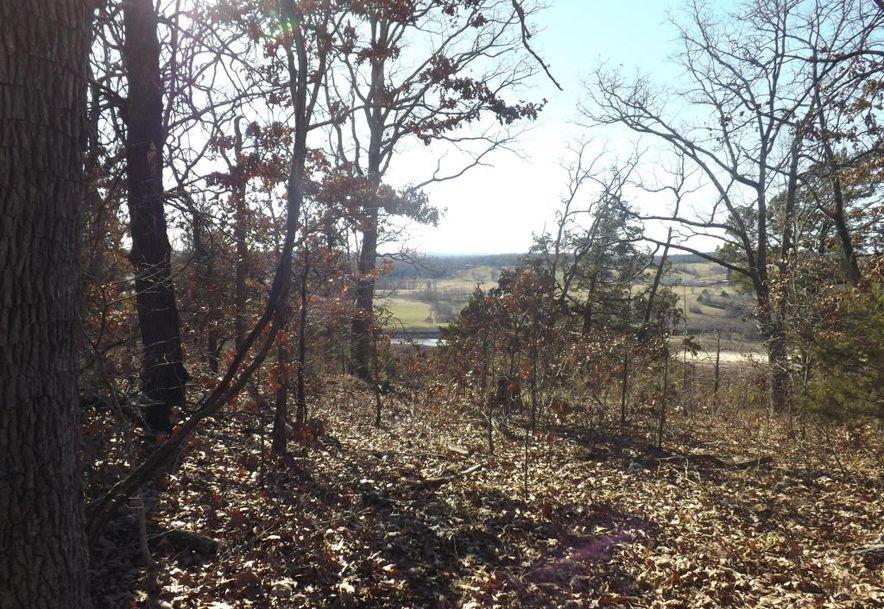 24420 Us Hwy. 160 Kissee Mills, MO 65680 - Photo 3
