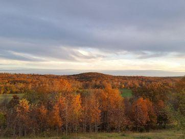 1475 Panther Mountain Grove, MO 65711 - Image 1