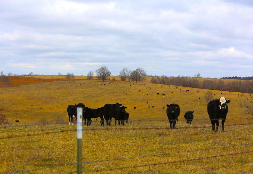 None None County Road 359 None None Thayer, MO 65791 - Photo 102