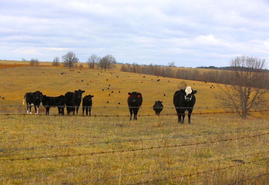 None None County Road 359 None None Thayer, MO 65791 - Photo 105