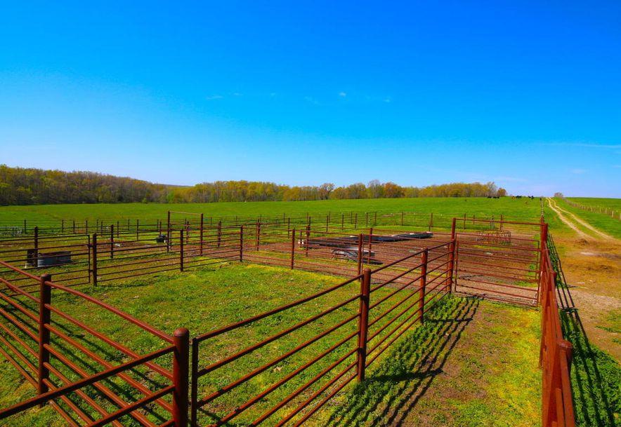None None County Road 359 None None Thayer, MO 65791 - Photo 110