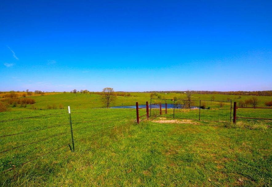 None None County Road 359 None None Thayer, MO 65791 - Photo 113
