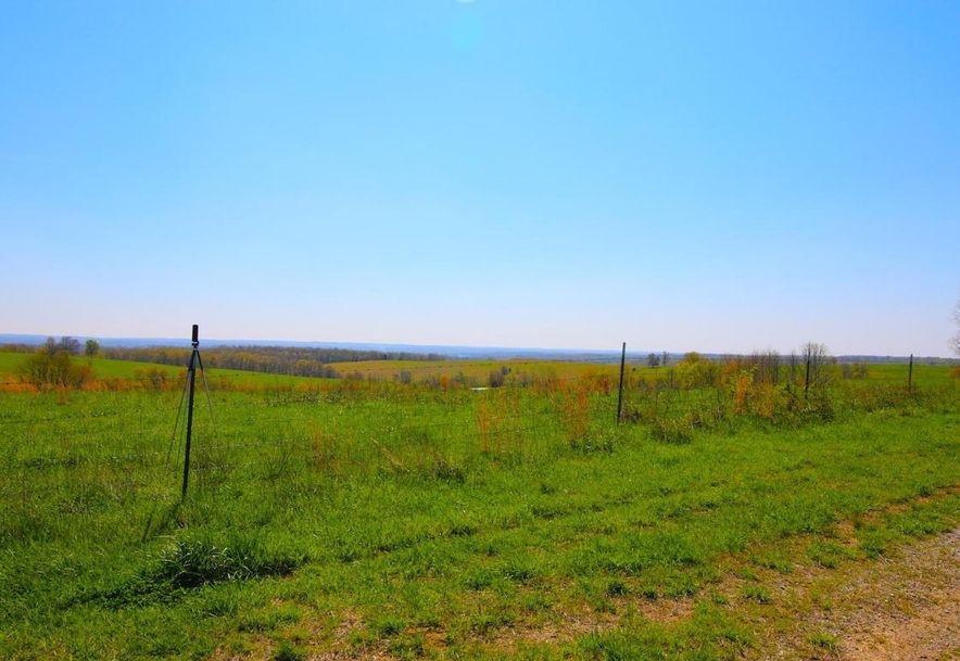 None None County Road 359 None None Thayer, MO 65791 - Photo 118