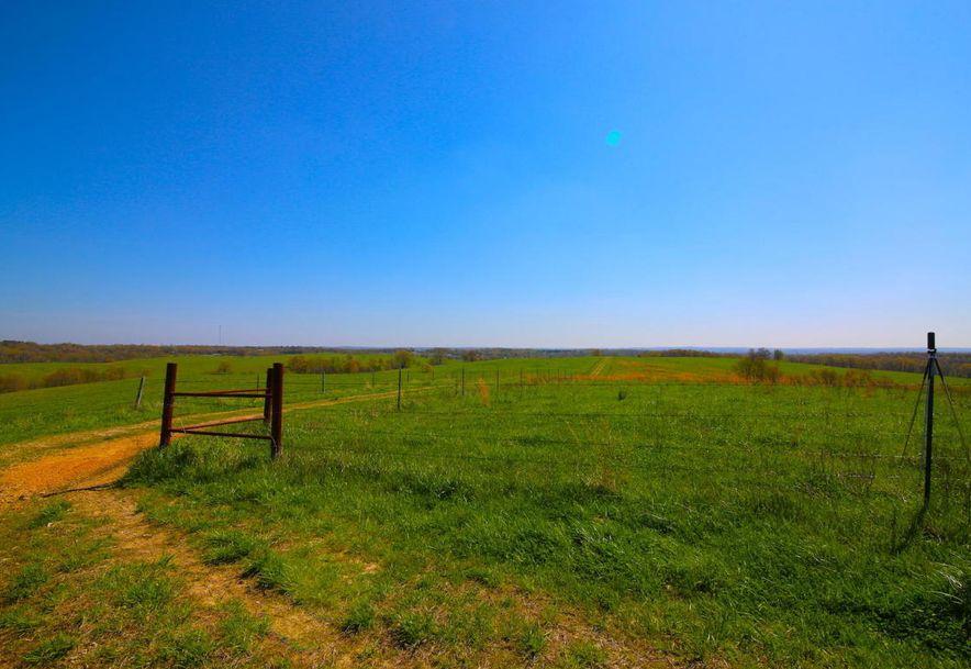 None None County Road 359 None None Thayer, MO 65791 - Photo 119