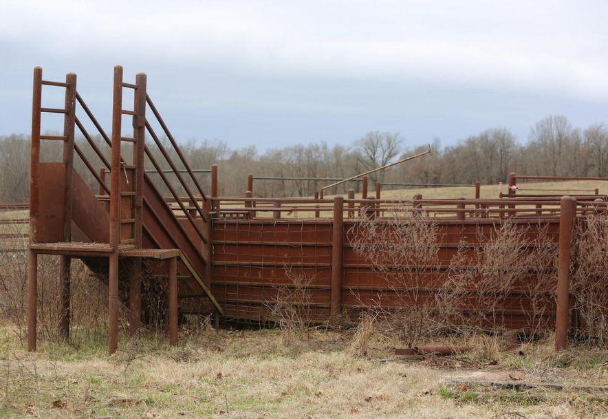 None None County Road 359 None None Thayer, MO 65791 - Photo 138
