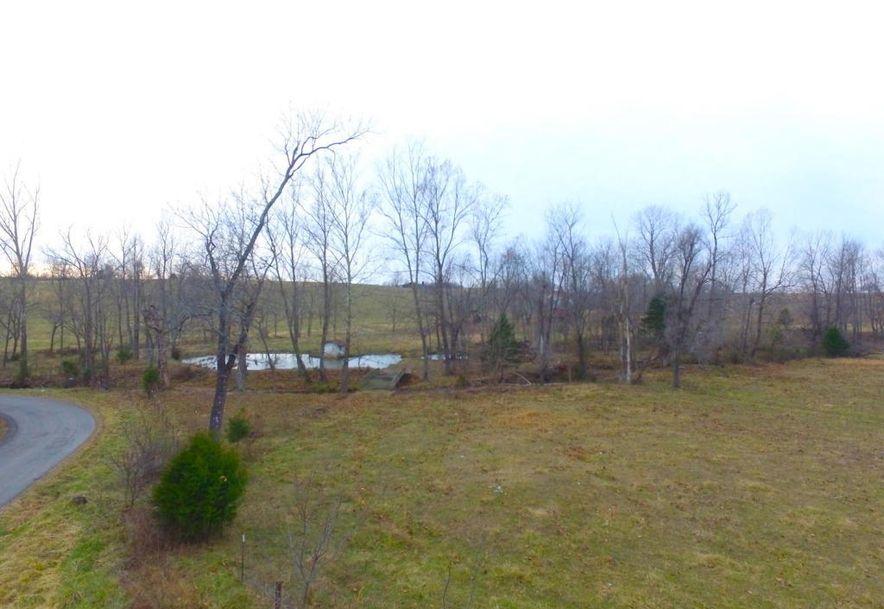 None None County Road 359 None None Thayer, MO 65791 - Photo 61