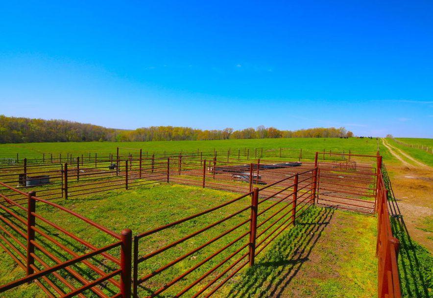 None None County Road 359 None None Thayer, MO 65791 - Photo 77