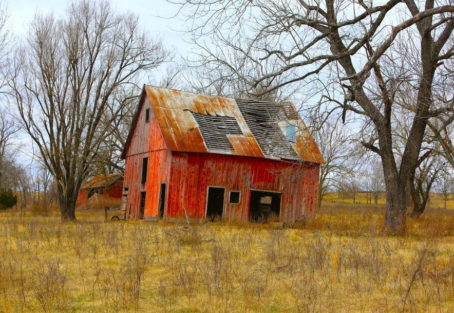 None None County Road 359 None None Thayer, MO 65791 - Photo 91