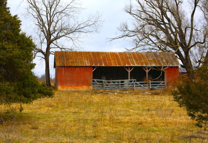 None None County Road 359 None None Thayer, MO 65791 - Photo 92