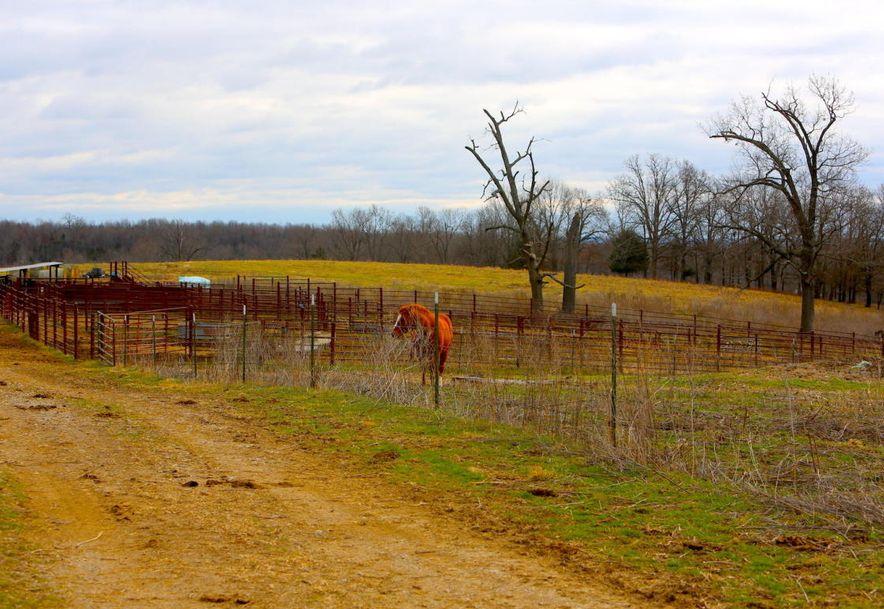 None None County Road 359 None None Thayer, MO 65791 - Photo 93