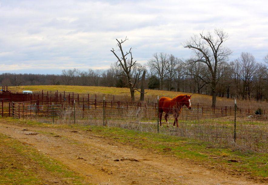 None None County Road 359 None None Thayer, MO 65791 - Photo 94