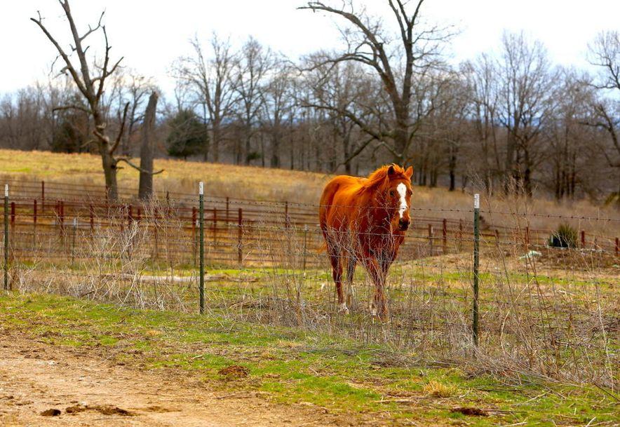 None None County Road 359 None None Thayer, MO 65791 - Photo 95