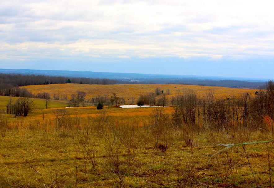 None None County Road 359 None None Thayer, MO 65791 - Photo 96
