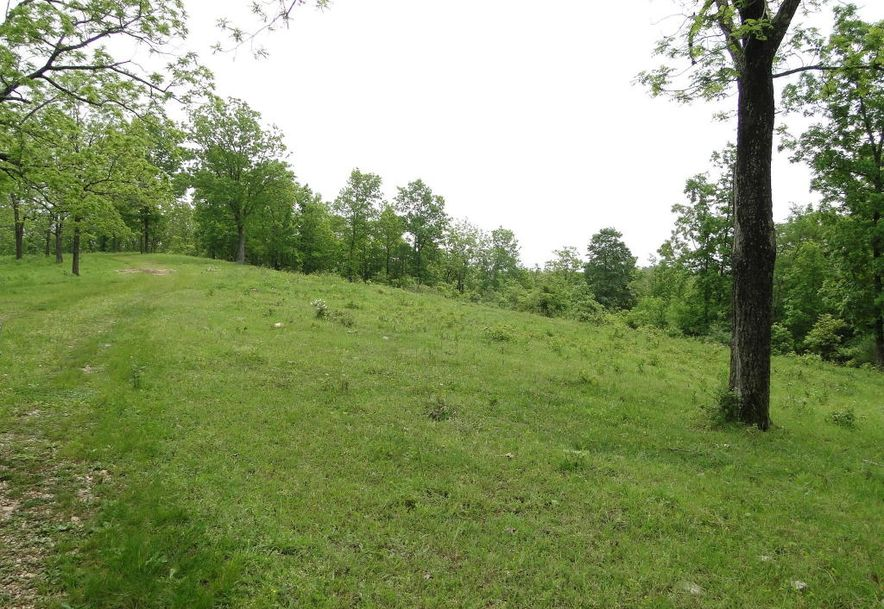 2801 Count Rd 544 Pvt Dr-A Seymour, MO 65746 - Photo 48