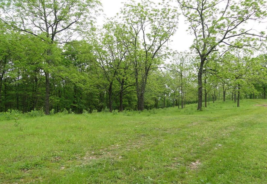 2801 Count Rd 544 Pvt Dr-A Seymour, MO 65746 - Photo 49