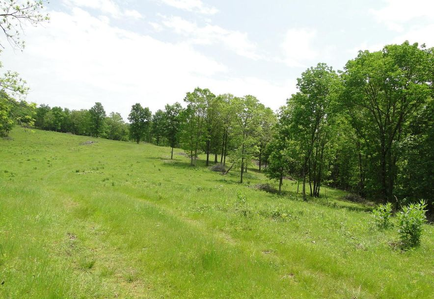 2801 Count Rd 544 Pvt Dr-A Seymour, MO 65746 - Photo 52